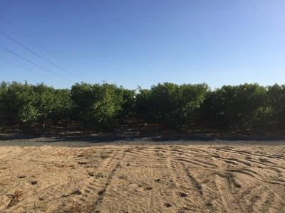 Kingsburg Residential Lots & Land For Sale: 12184 E Conejo Avenue