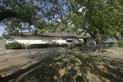 Fresno Single Family Home For Sale: 3689 N Blythe Avenue