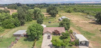 Sanger Single Family Home For Sale: 14234 E Annadale Avenue