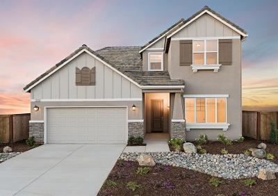 Clovis Single Family Home For Sale: 4207 Sierra Madre Avenue