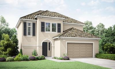 Clovis Single Family Home For Sale: 4285 Fairmont Avenue