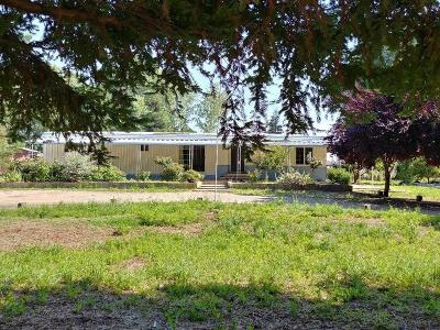 Sanger Single Family Home For Sale: 2925 S Channel Road
