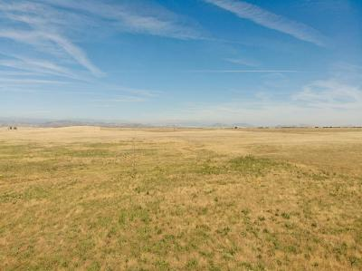 Clovis Residential Lots & Land For Sale: 10428 N Armstrong Avenue