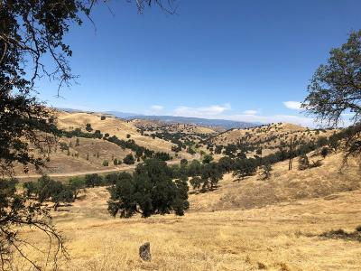 Clovis Residential Lots & Land For Sale: 16246 Auberry Road
