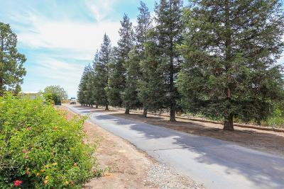 Sanger CA Single Family Home For Sale: $875,000