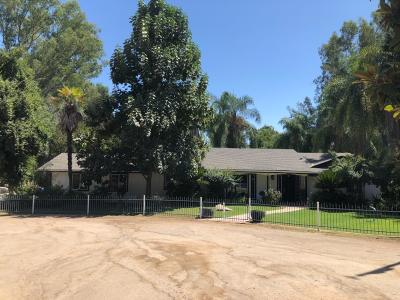 Reedley Single Family Home For Sale: 19671 E Jefferson Avenue