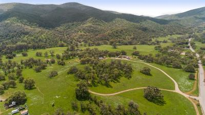 Fresno County, Madera County Single Family Home For Sale: 29839 Watts Valley Road