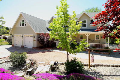 Lake Hughes Single Family Home For Sale: 18008 Newvale Dr.