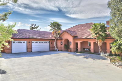Palmdale Single Family Home For Sale: 36357 Lakepointe Lane