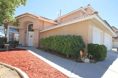 Lancaster Single Family Home For Sale: 3015 Glad Way