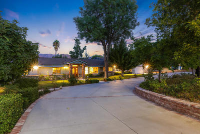 Canyon Country Single Family Home For Sale: 26752 Brooken Avenue