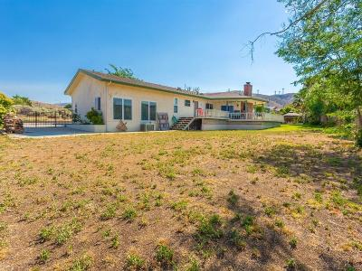 Palmdale Single Family Home For Sale: 40811 W 55th Street
