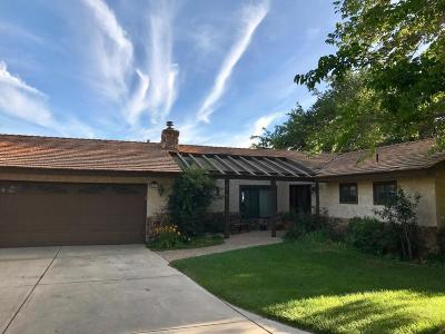 Palmdale Single Family Home For Sale: 643 W Barrel Springs Road