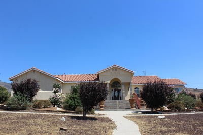 Palmdale Single Family Home For Sale: 1353 Eagle Butte