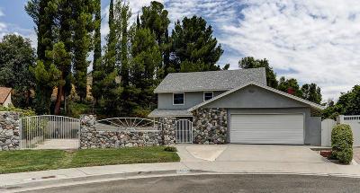 Santa Clarita Single Family Home For Sale: 16501 Goodvale Road