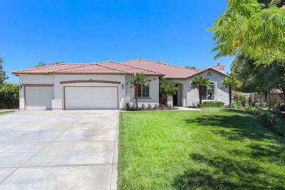 Lancaster Single Family Home For Sale: 4221 San Giovanni Ct