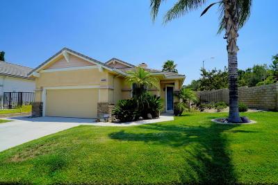 Santa Clarita Single Family Home For Sale: 28302 Santa Catarina Road
