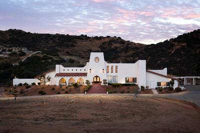Acton Single Family Home For Sale: 35400 Via Famero Drive