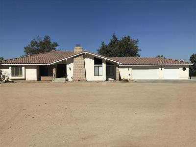 Palmdale Single Family Home For Sale: 40855 W 27th Street