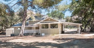 Santa Clarita Single Family Home For Sale: 15269 Iron Canyon Road