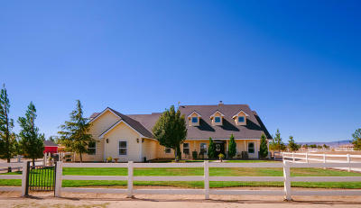 Lancaster Single Family Home For Sale: 8740 W Avenue C10