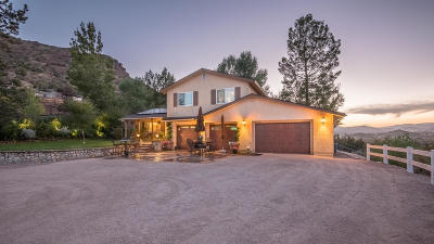 Acton Single Family Home For Sale: 31761 Lake Meadow Rd