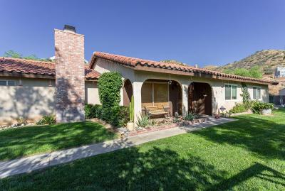 Acton Single Family Home For Sale: 2906 Golden Spur Road