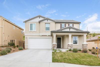 Santa Clarita Single Family Home For Sale: 19619 Griffith Drive
