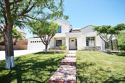 Palmdale Single Family Home For Sale: 38447 Puma Lane