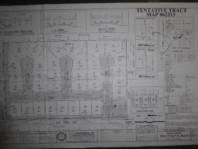 Palmdale Residential Lots & Land For Sale: Ave S4 E Cor S4/42e