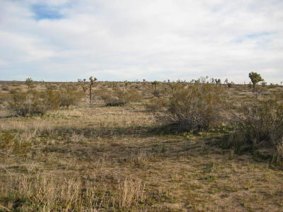 Residential Lots & Land For Sale: 110th St. E Near O-12