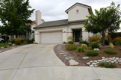 Santa Clarita Single Family Home For Sale: 14704 Sundance Place