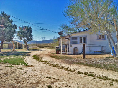 Lancaster Single Family Home For Sale: 45740 Munz Ranch Road
