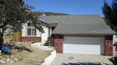 Lake Hughes Single Family Home For Sale: 14817 Elizabeth Lake Road