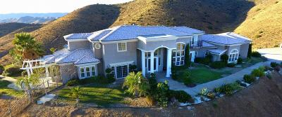 Acton, Canyon Country, Castaic, Saugus, Newhall, Santa Clarita, Stevenson Ranch, Valencia, Agua Dulce Single Family Home For Sale: 8511 Valley Sage Road