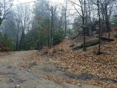 Lake Arrowhead Residential Lots & Land For Sale: Burnt Mill/Rim Of The World Drive