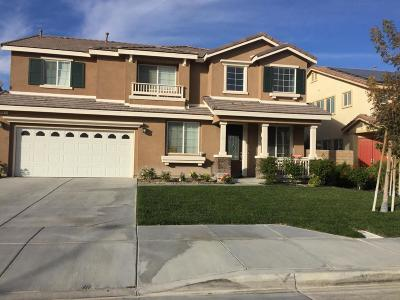 Lancaster Single Family Home For Sale: 4611 Jewel Drive Drive
