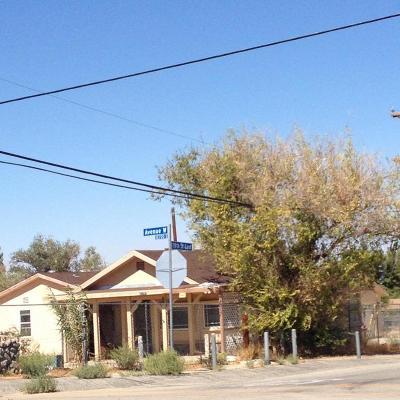 Pearblossom Single Family Home For Sale: 12757 E Avenue W