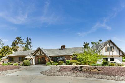 Acton, Canyon Country, Castaic, Saugus, Newhall, Santa Clarita, Stevenson Ranch, Valencia, Agua Dulce Single Family Home For Sale: 34303 Agua Dulce Canyon Road