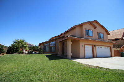 Palmdale Single Family Home For Sale: 41514 Terrazzo Drive