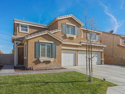 Lancaster Single Family Home For Sale: 43940 Spring Street