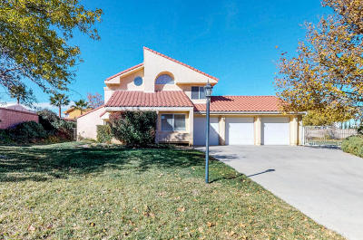 Palmdale Single Family Home For Sale: 41115 Oakview Lane