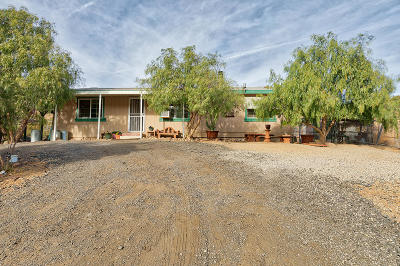 Acton, Canyon Country, Castaic, Saugus, Newhall, Santa Clarita, Stevenson Ranch, Valencia, Agua Dulce Single Family Home For Sale: 5235 Hubbard Road