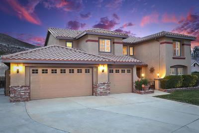Palmdale Single Family Home For Sale: 40931 Via Tranqilo