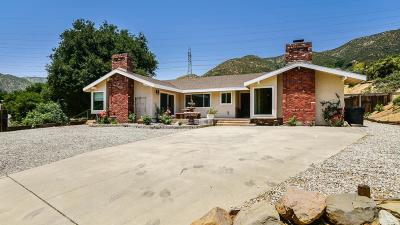 Santa Clarita Single Family Home For Sale: 38705 San Francisquito Canyon Road