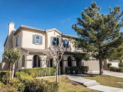 Palmdale Single Family Home For Sale: 2029 Tangerine Street