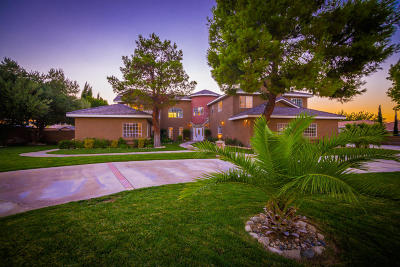 Lancaster Single Family Home For Sale: 42123 W 22nd Street