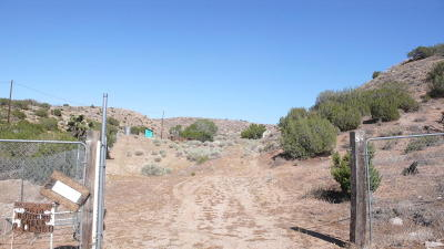 Palmdale Single Family Home For Sale: 2614 Rushing Creek