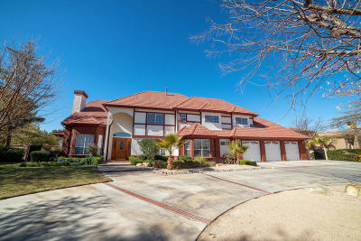 Lancaster Single Family Home For Sale: 42433 W 27th Street