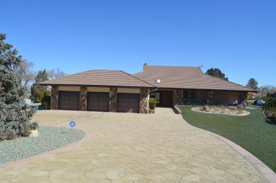 Llano Single Family Home For Sale: 32022 Muirfield Drive